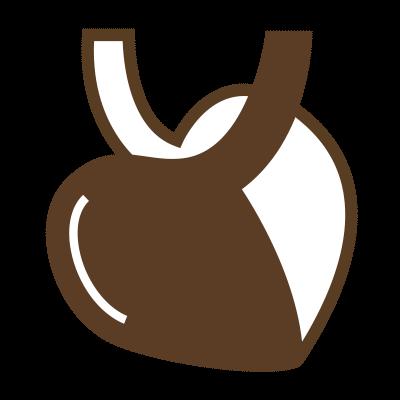 循環器(心臓)